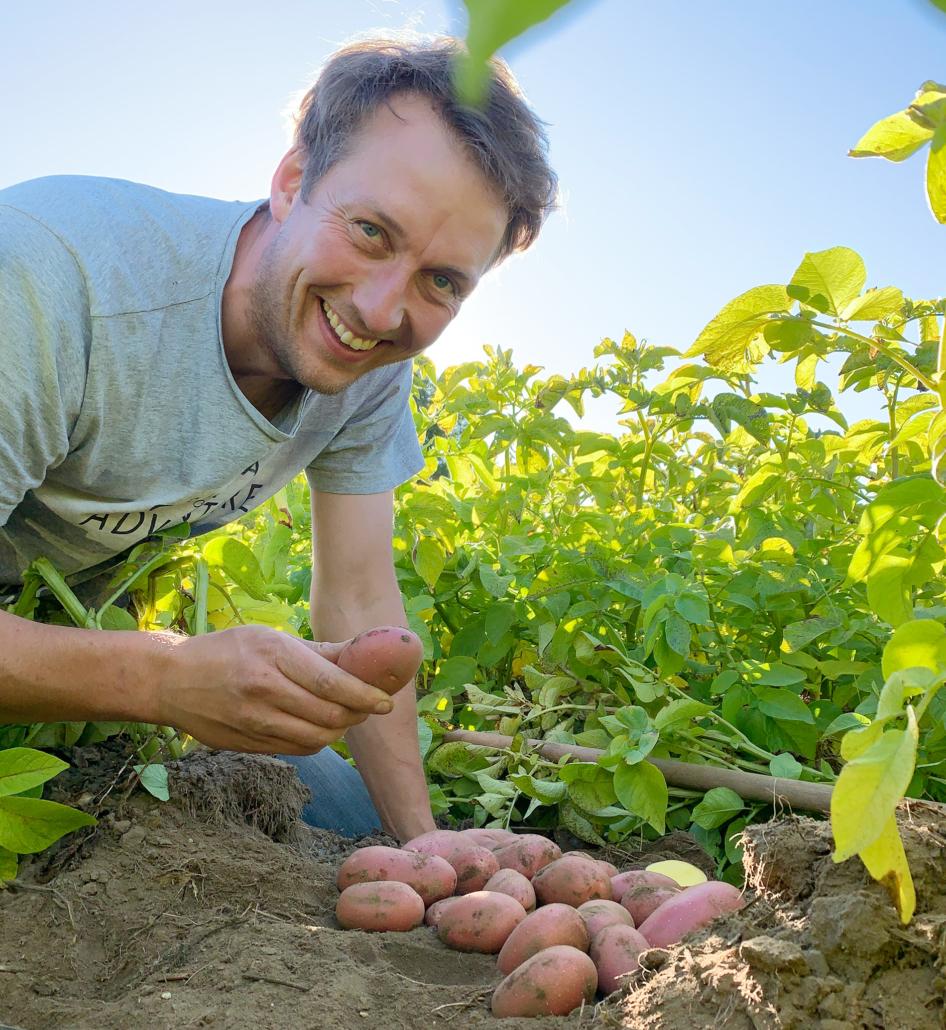 Henning Bannick und die Kartoffelsorte Laura